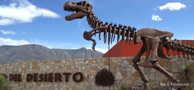 Museo del Desierto3