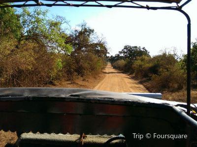 Ruhuna National Park