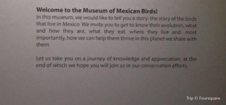 Museo de las Aves1