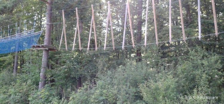 Kletterwald1