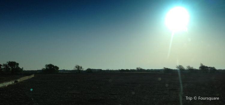 Prairie Dog Town2