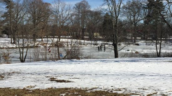 Strawbridge Lake Park