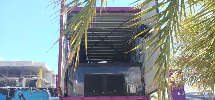Graffiti Gardens Miami2