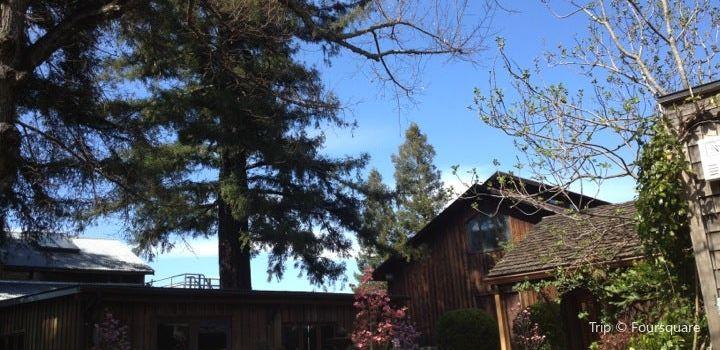 Sequoia Grove3