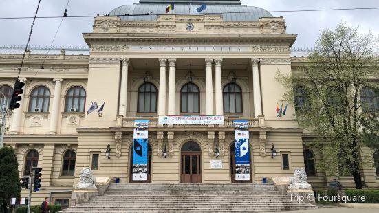 Muzeul Universitatii Alexandru Ioan Cuza