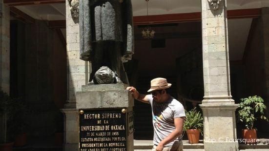Instituto de Ciencias y Artes de Oaxaca