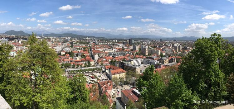 Ljubljana Marshes2