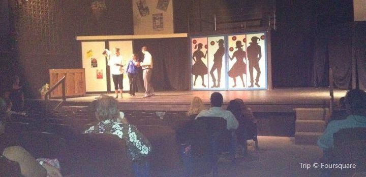 Aloha Performing Arts Center1
