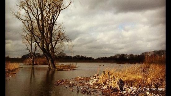 Bourgoyen-Ossemeersen Nature Reserve