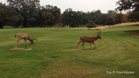 Bidwell Park Golf Course Travel Guidebook Must Visit Attractions In Chico Bidwell Park Golf Course Nearby Recommendation Trip Com