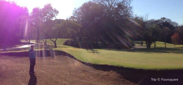Randpark Golf Club3