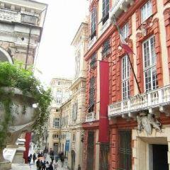 新街和羅利宮殿體系用戶圖片