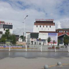 格薩爾王廣場用戶圖片