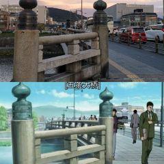 五條大橋用戶圖片