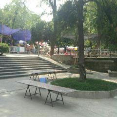 南山兒童公園用戶圖片