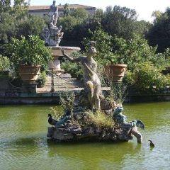 波波里花園用戶圖片
