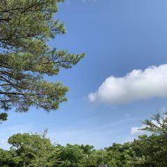西海國立公園用戶圖片