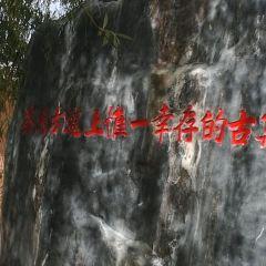 沙溪古鎮用戶圖片