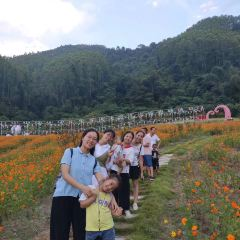 Paiyang Mountain Forest Park User Photo