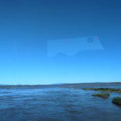 撓力河用戶圖片