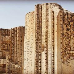 Dar Nejma Ezzahra 宮殿用戶圖片