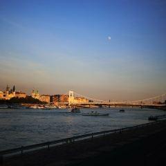 伊莉莎白橋用戶圖片