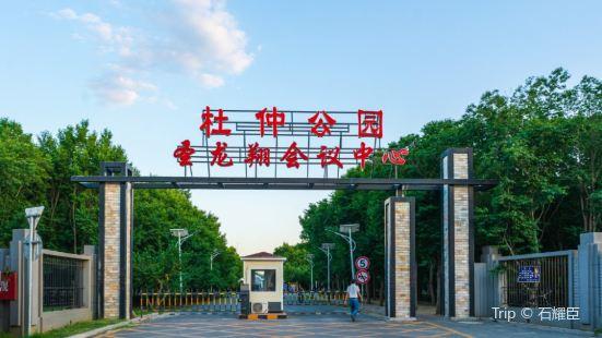 Eucommia Ulmoides Oliv Park (Northeast Gate)