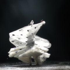 《雲南映像》演出用戶圖片