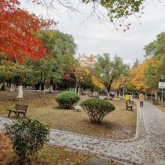 Baiyutan Park User Photo