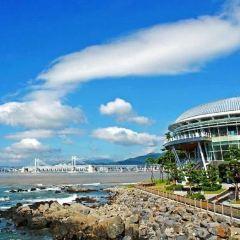 APEC Naru Park User Photo