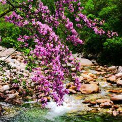 Changqing Nature Reserve User Photo