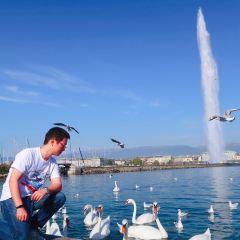 大噴泉用戶圖片