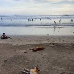 Batu Belig Beach User Photo