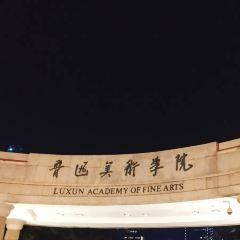 Luxun Academy of Fine Arts User Photo