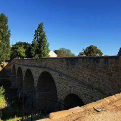 T. Tyler Potterfield Memorial Bridge User Photo