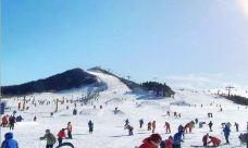 莲花山滑雪场-顺义区-金小同