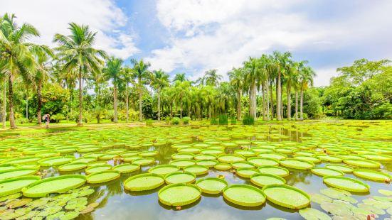Xishuangbanna Tropical Botanical Garden, Chinese Academy of Sciences