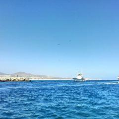 Los Cabos Tarzan Boats User Photo