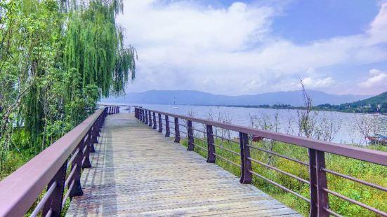 Fuxianhu Bei'an Wetland
