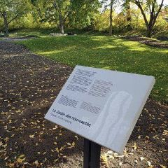 蒙彼利埃植物園用戶圖片