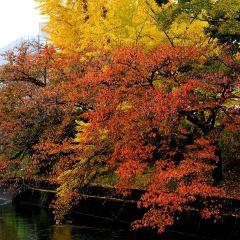 오키나와 네오파크동물원 여행 사진