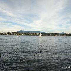 Mont Blanc Bridge用戶圖片