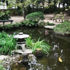 樂水園用戶圖片