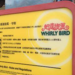 Whirly Bird User Photo
