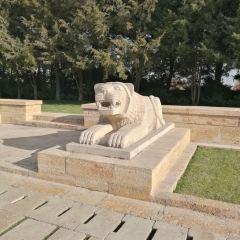Lion Road User Photo