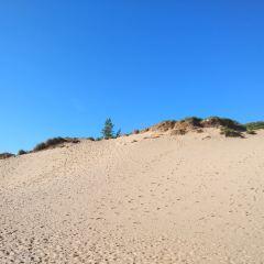 Van's Beach用戶圖片
