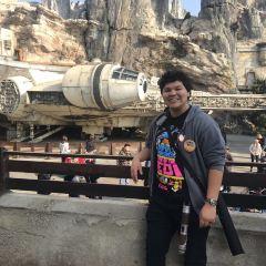 디즈니랜드 파크 여행 사진