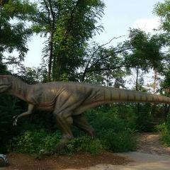밍후 국제목장 여행 사진