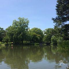 中島公園用戶圖片