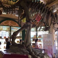 恐龍城大劇場用戶圖片